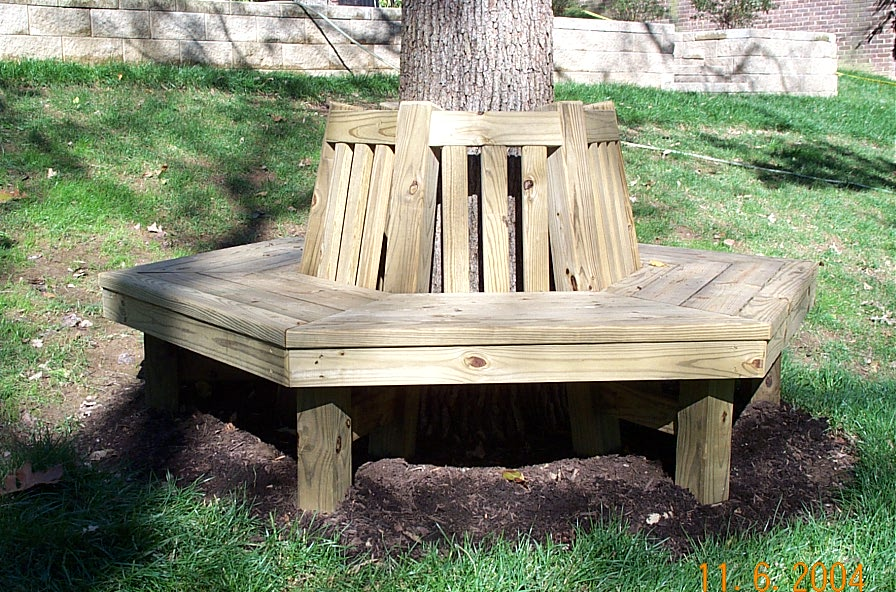 plans bench around tree